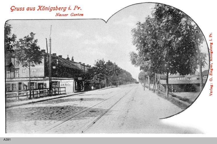 Königsberg, Nasser Garten