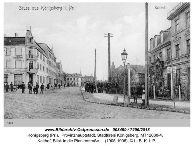 Königsberg, Kalthof