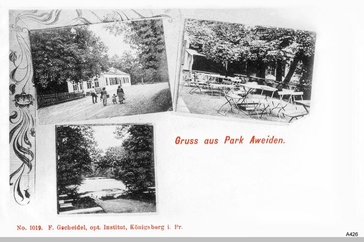 Königsberg, Park Aweiden