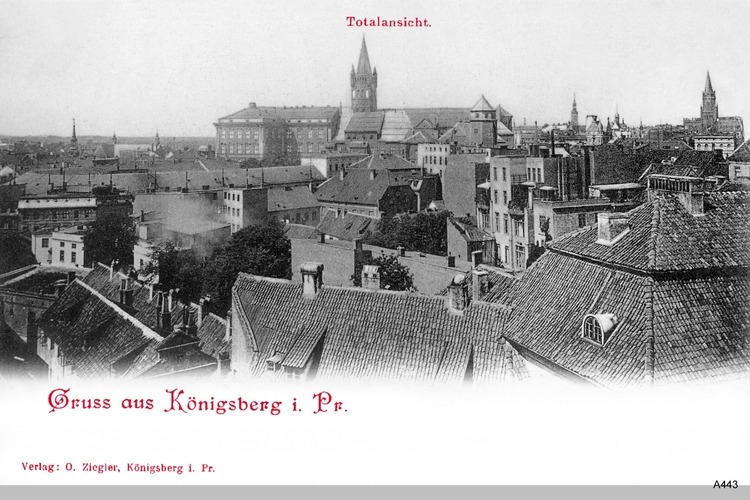Königsberg, Blick über die Dächer zum Schloß