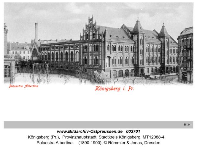 Königsberg, Palaestra Albertina