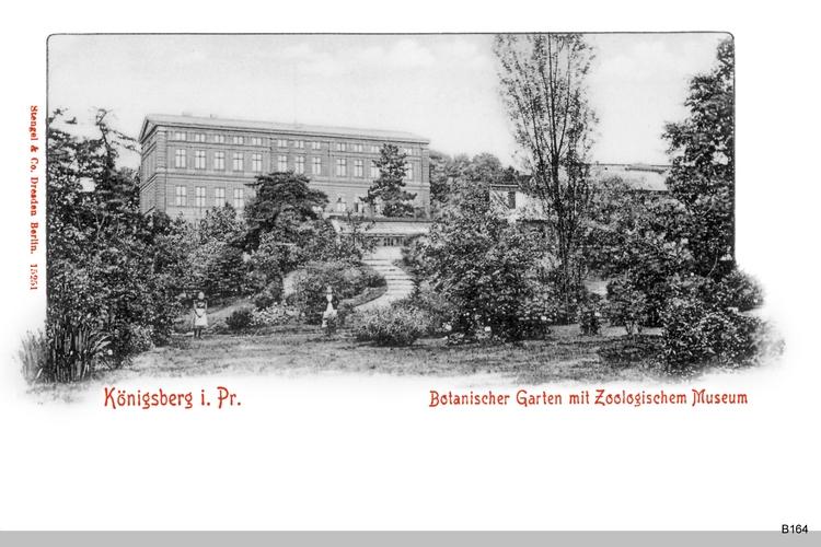 Königsberg, Botanischer Garten mit Zoologischem Museum