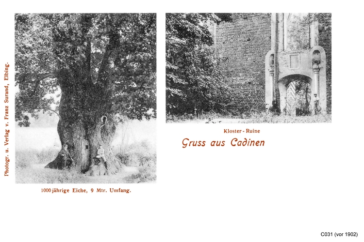 Cadinen, Eiche und Kloster