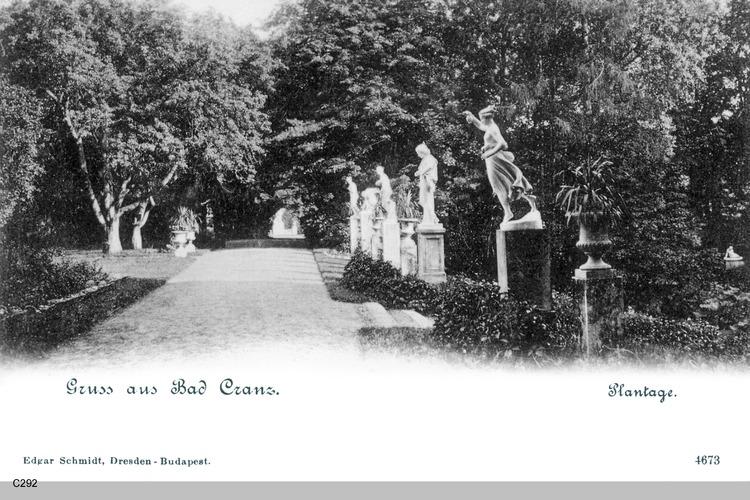Cranz, Plantage