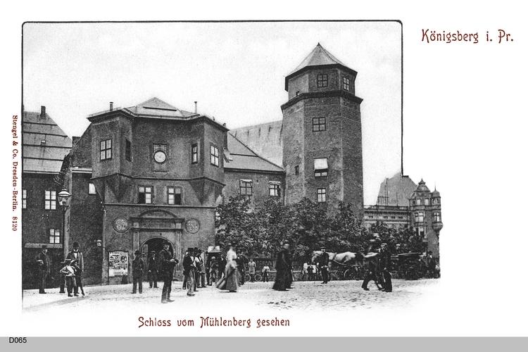 Königsberg, Schloß vom Mühlenberg