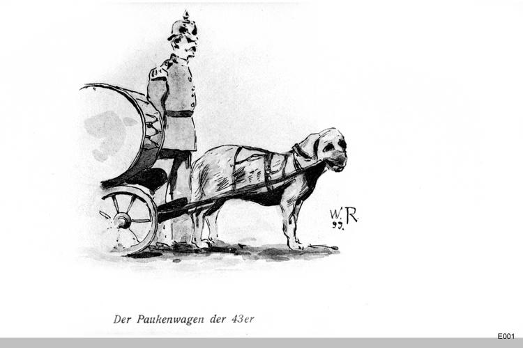 Königsberg, Paukenhund der 43er
