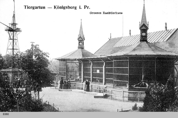 Königsberg, Raubtierhaus im Tiergarten