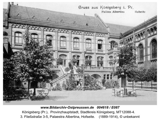 Königsberg, Palästra Albertina