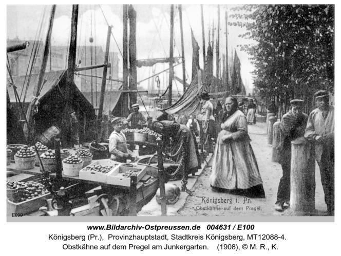 Königsberg, Obstkähne auf dem Pregel
