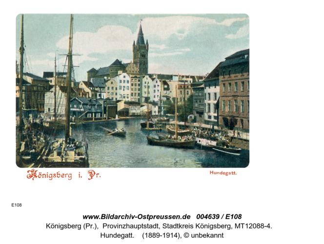 Königsberg, Hundegatt Farbig