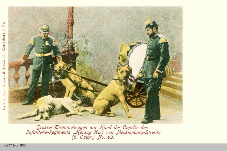 Königsberg, Großer Trommelwagen
