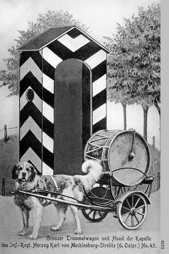 Königsberg, Großer Trommelwagen mit Hund