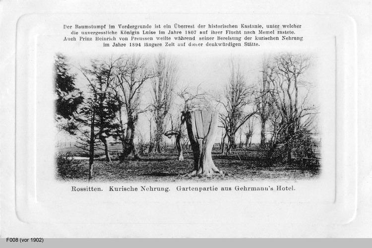 Rossitten, Gartenpartie aus Gehrmanns Hotel