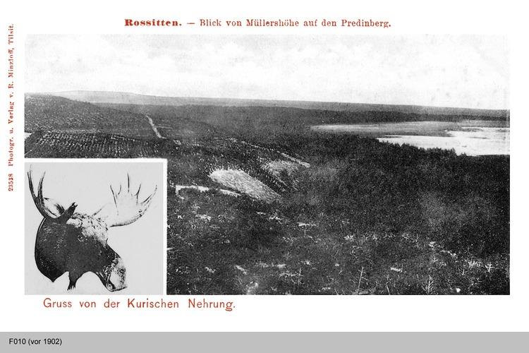 Rossitten, Blick von Müllershöhe auf den Predinberg