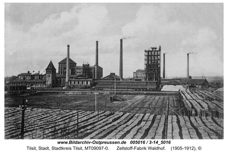 Tilsit, Zellstoff-Fabrik Waldhof