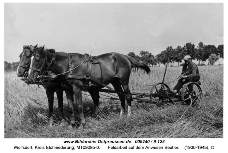 Wolfsdorf, Feldarbeit auf dem Anwesen Beutler