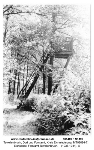 Tawellenbruch, Elchkanzel Forstamt Tawellenbruch