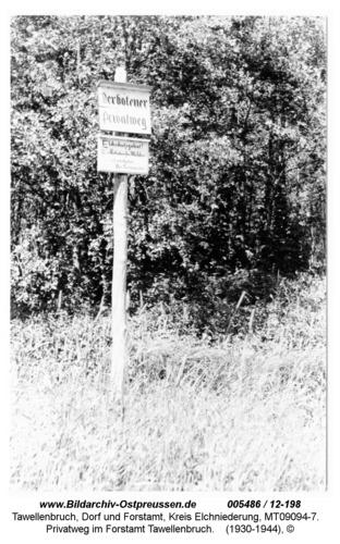 Tawellenbruch, Privatweg im Forstamt Tawellenbruch