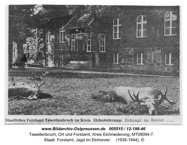 Tawellenbruch,  Staatl. Forstamt, Jagd im Elchrevier