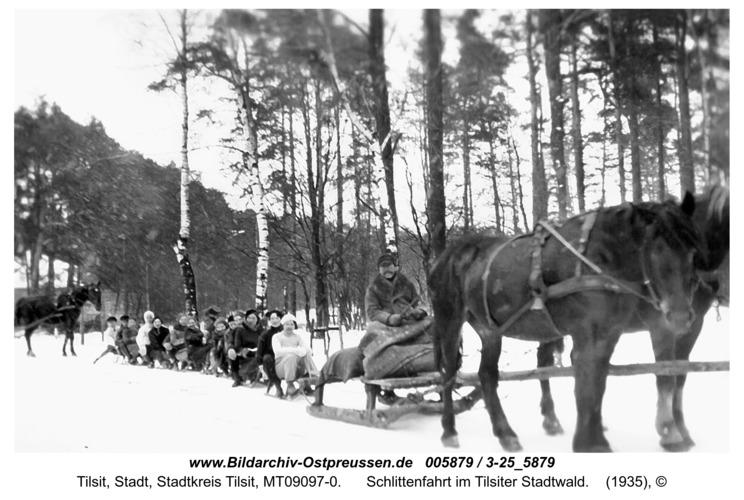 Tilsit, Schlittenfahrt im Tilsiter Stadtwald