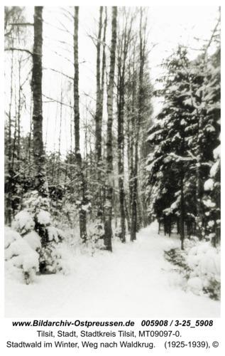 Tilsit, Stadtwald im Winter, Weg nach Waldkrug