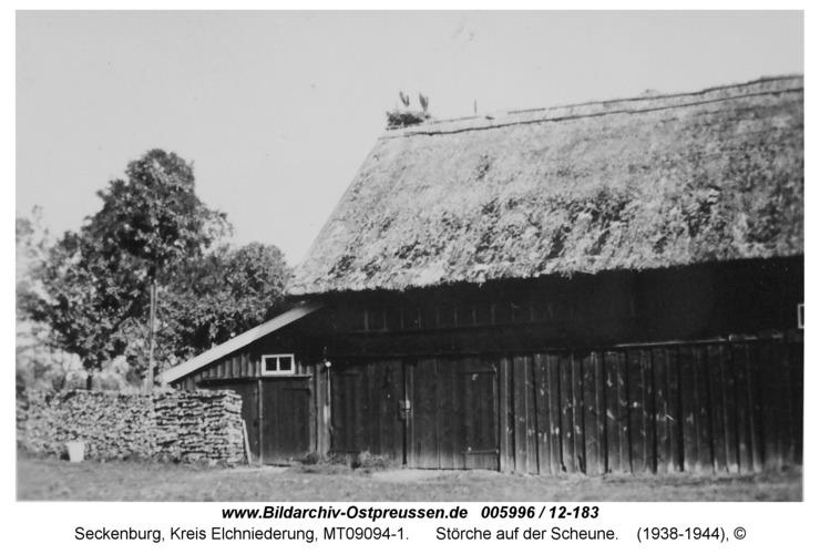 Seckenburg, Störche auf der Scheune
