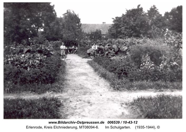 Erlenrode, im Schulgarten