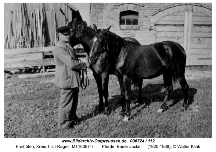 Freihöfen, Pferde, Bauer Juckel