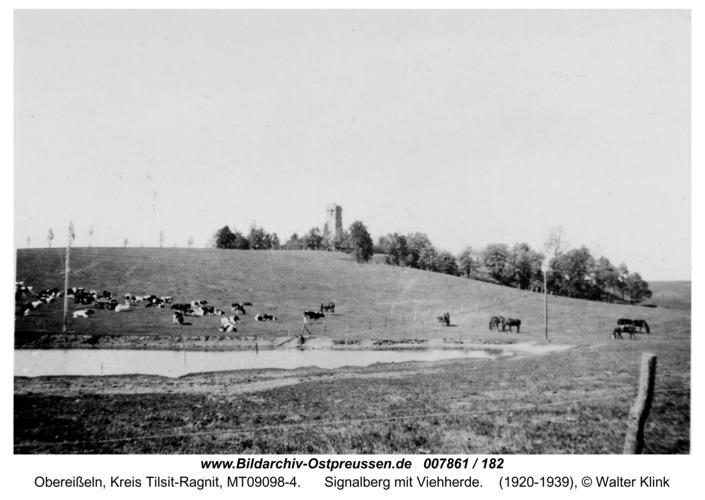 Obereißeln, Signalberg mit Viehherde