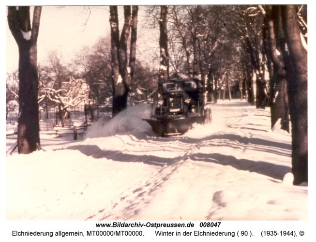 Winter in der Elchniederung ( 90 )
