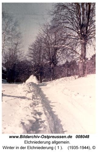 Winter in der Elchniederung ( 1 )