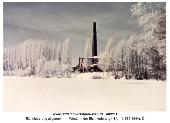 Winter in der Elchniederung ( 4 )