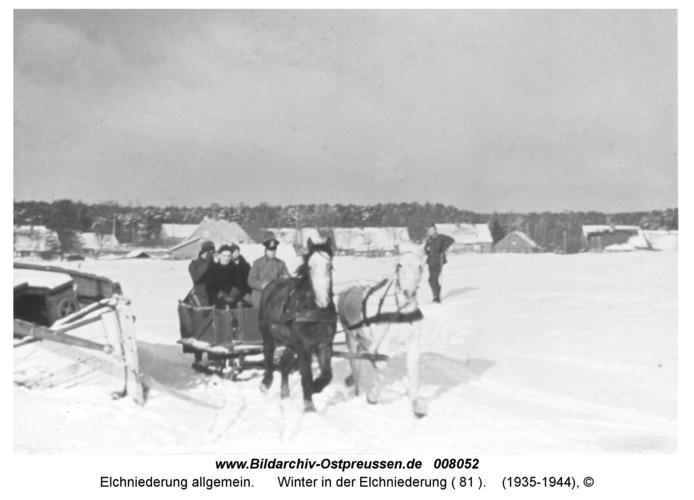 Winter in der Elchniederung ( 81 )