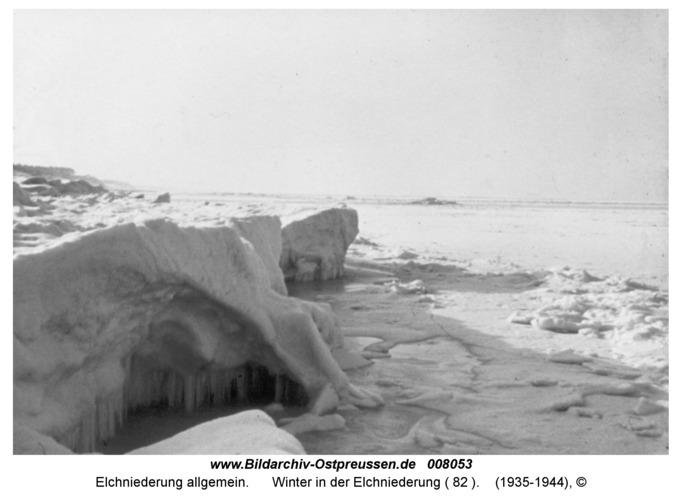 Winter in der Elchniederung ( 82 )
