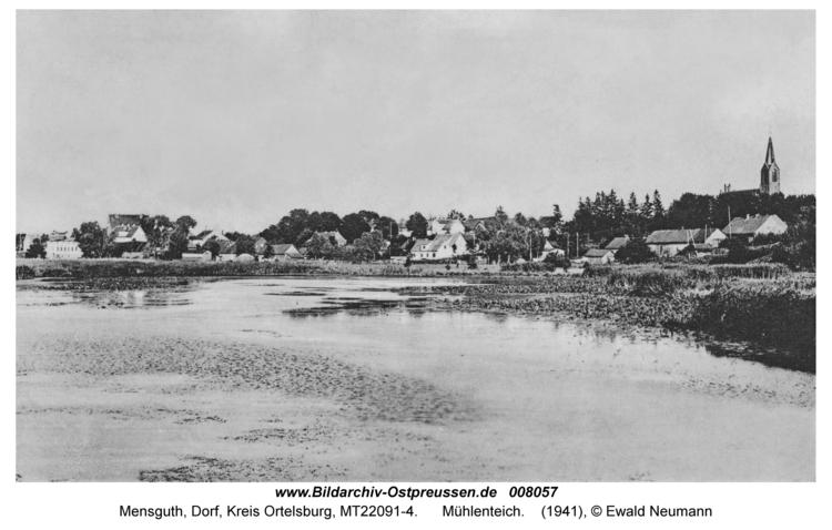 Mensguth, Mühlenteich