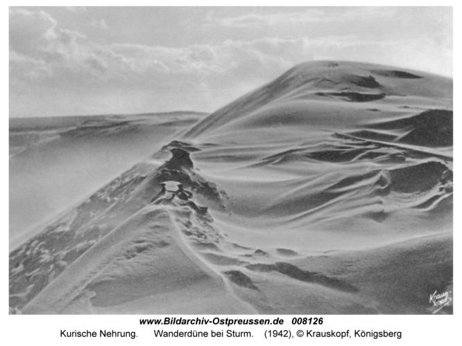 Kurische Nehrung, Wanderdüne bei Sturm