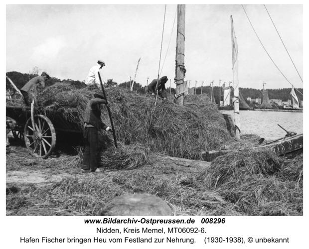 Nidden, Hafenfischer bringen Heu vom Festland zur Nehrung