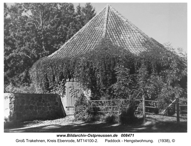 Groß Trakehnen, Paddock - Hengstwohnung