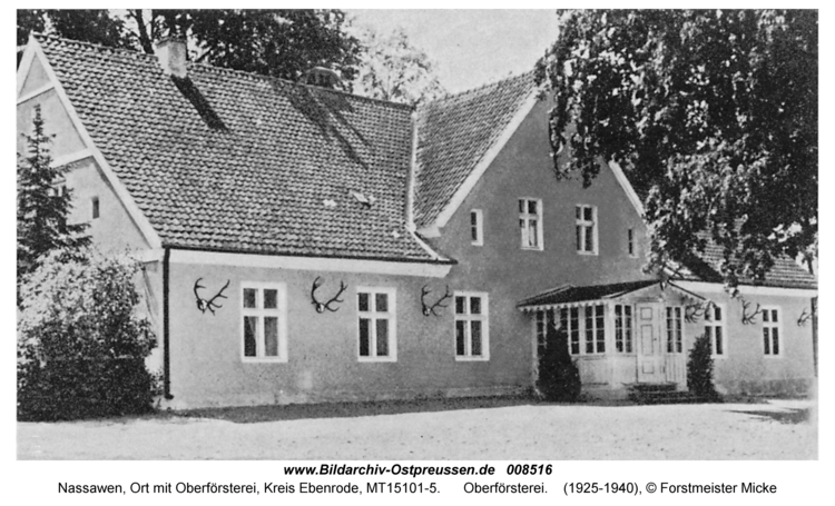 Nassawen, Oberförsterei