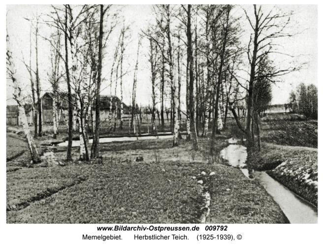 Memelgebiet, Herbstlicher Teich