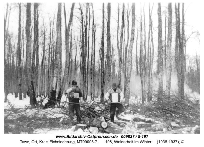 Tawe, 108, Waldarbeit im Winter