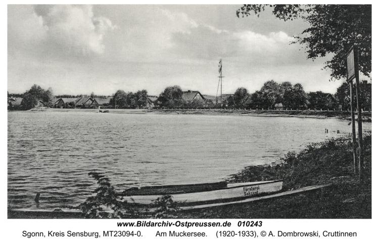 Hirschen, Am Muckersee