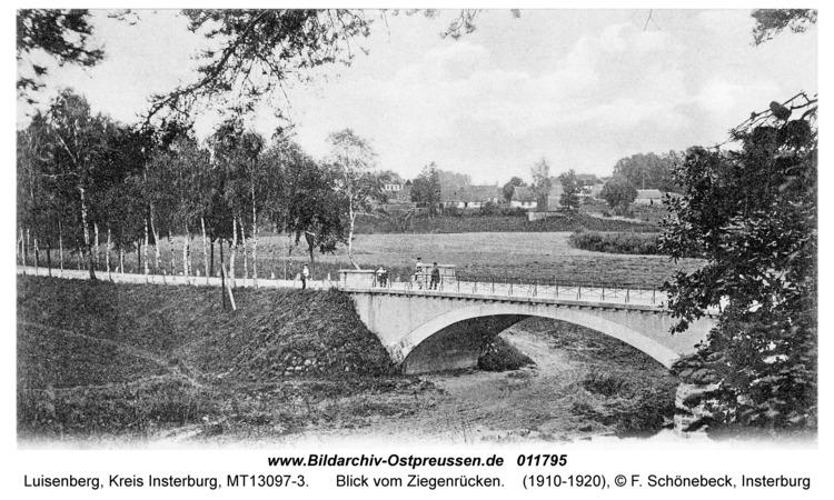 Luisenberg Kr. Insterburg, Blick vom Ziegenrücken