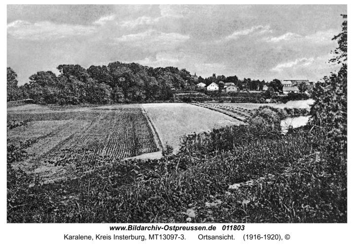 Luisenberg Kr. Insterburg, Ortsansicht