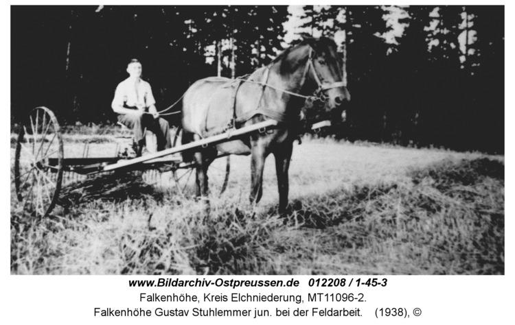 Falkenhöhe Gustav Stuhlemmer jun. bei der Feldarbeit
