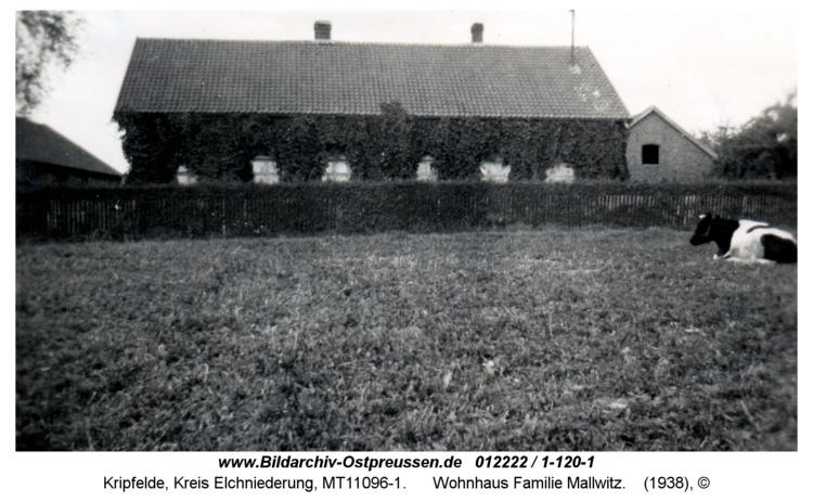 Kripfelde, Wohnhaus Familie Mallwitz