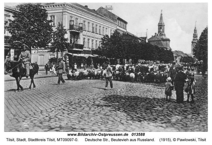 Tilsit, Deutsche Str., Beutevieh aus Russland