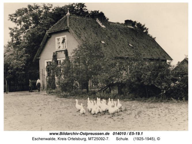 Eschenwalde, Schule
