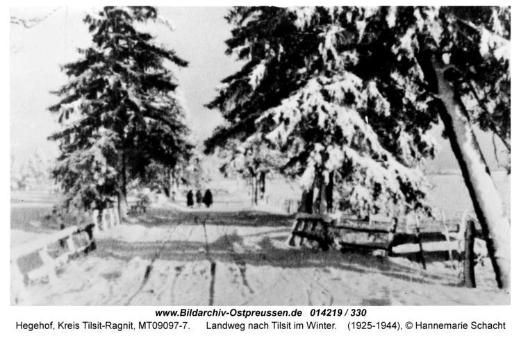 Hegehof, Landweg nach Tilsit im Winter