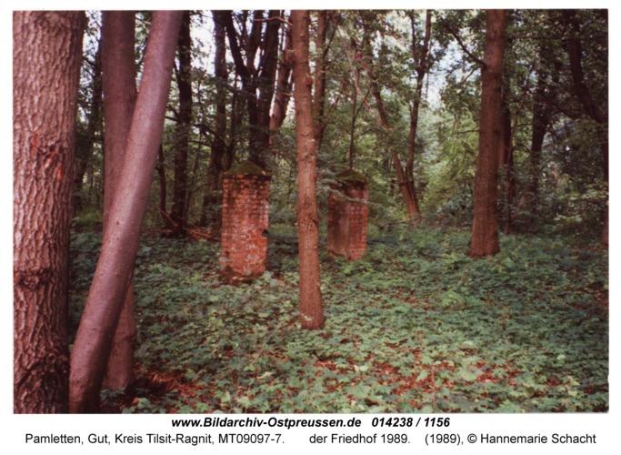 Pamletten-Gut, der Friedhof 1989